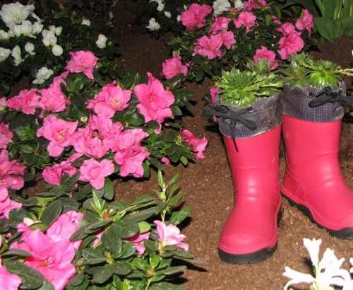 Plan the Garden Boots in the garden