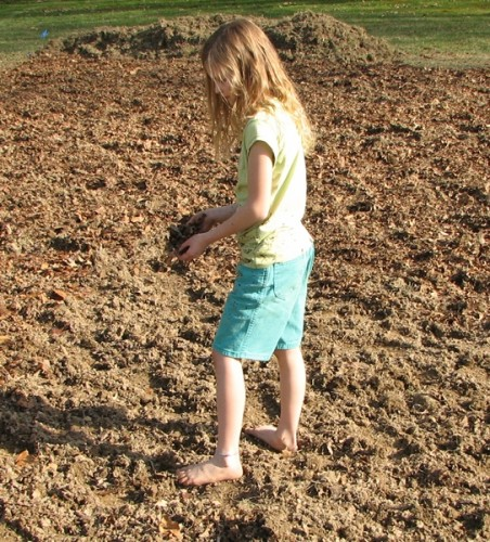Prepare Garden Location-Spreading Compost
