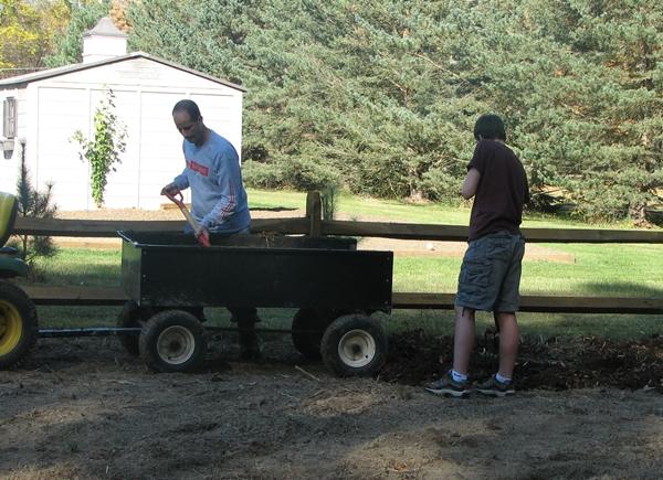 Prepare garden soil: Spreading Horse Manure  in Garden