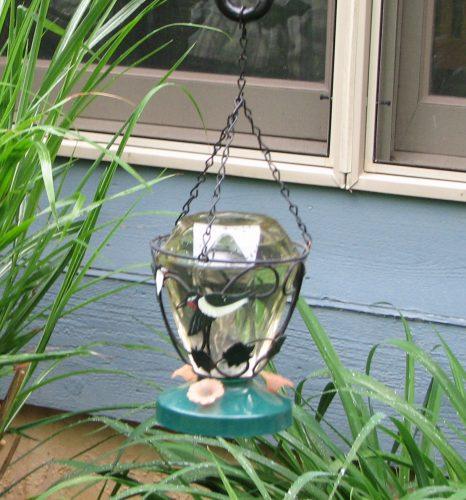 Hummingbird Feeder - Mama's Homestead