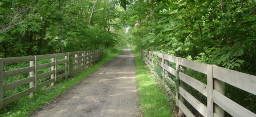 Homesteading Path