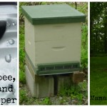 Beekeeping Class: The Honeybee, the Hive, and the Beekeeper