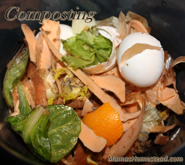 Homemade Fertilizer From Vegetable Scraps: Composting- Mama's Homestead