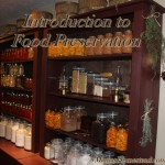 Introduction to Food Preservation