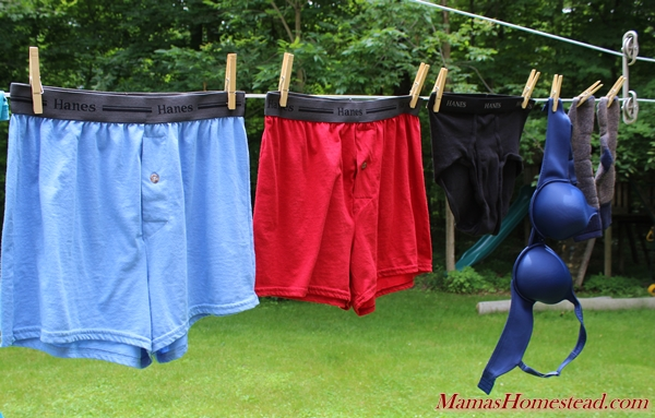 Clothesline Socks and Underwear