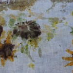 Nature Pigment Fabric Prints