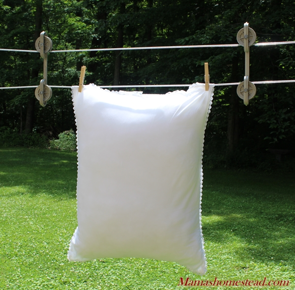 Pillow on Clothesline