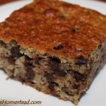 Chocolate Chip Banana Cake: Grain Free and Dairy Free