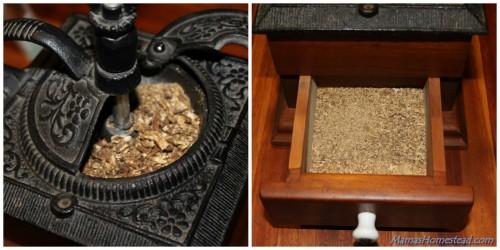 Dandelion Roots in Coffee Grinder