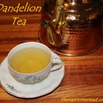 How to Make Dandelion Tea from Leaves and Flowers
