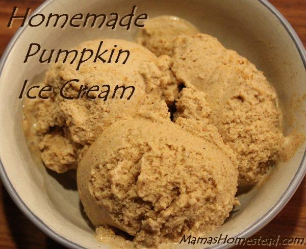 Homemade Pumpkin Ice Cream