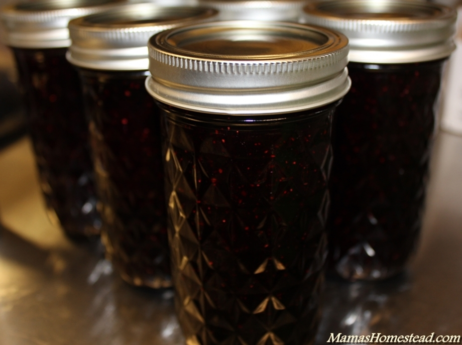 ... blueberry jam is the simplest way to preserve them to enjoy the rest