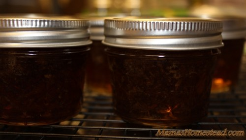 Canned Root Beer Jelly