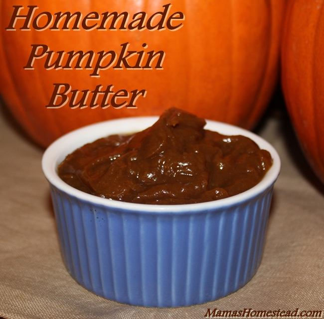Homemade Pumpkin Butter - Mama's Homestead