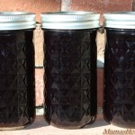 Grape Soda Jelly