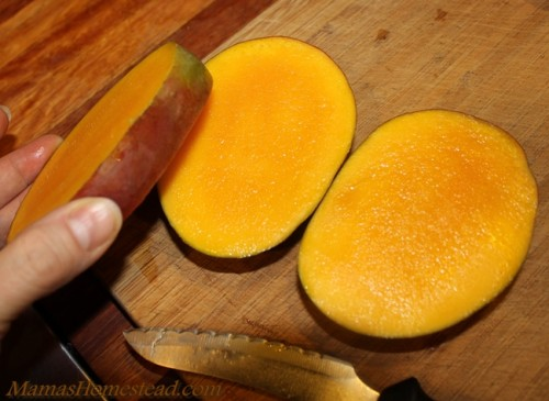 Cut Core from Mango