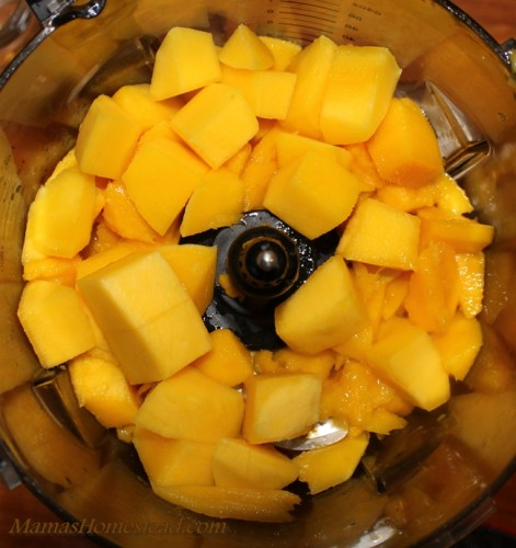 Mango in Food Processor