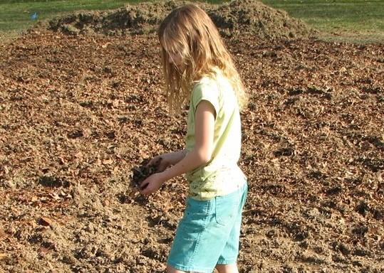 Prepare Garden Location Spreading Compost