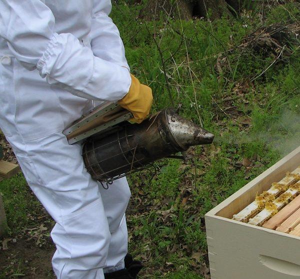 How to Light a Bee Smoker