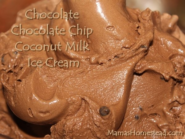 Chocolate Chocolate Chip Coconut Milk Ice Cream