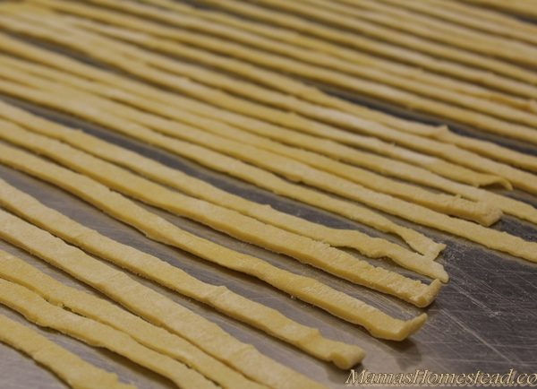 Cut Homemade Noodles